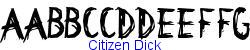 Citizen Dick   16K (2005-06-08)