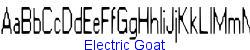 Electric Goat   14K (2002-12-27)
